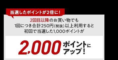 2回目以降のお買い物でも1回につき合計250円(税抜)以上利用すると、初回で当選した1,000ポイントが2,000ポイントにアップ!当選したポイントが2倍に!
